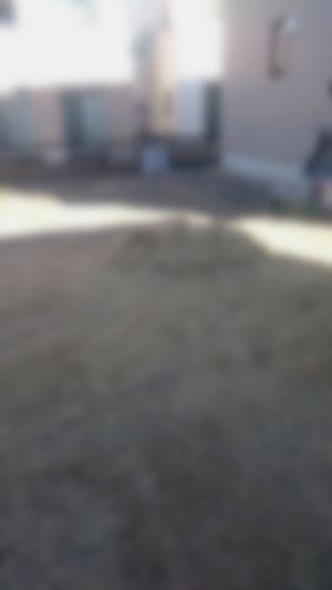 伊勢崎市 庭の芝刈り