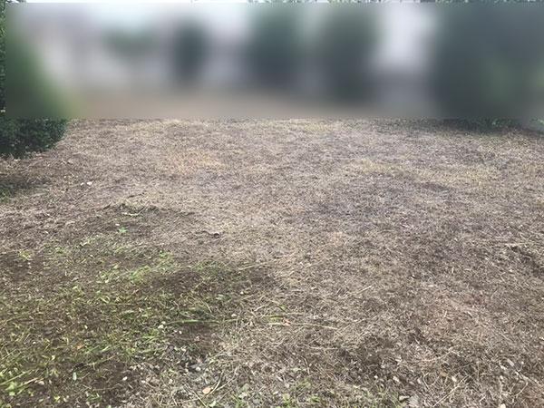 空家の敷地 草刈り作業
